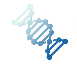 Icon representing codon optimization of DNA sequences for gene synthesis.