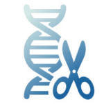 Icon representing CRISPR cas9 genome editing technology.