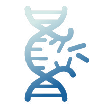 Icon representing gene and oligonucleotide synthesis.